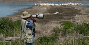 Anders Tomlinson photographing on Tule Lake National Wildlife Refuge.