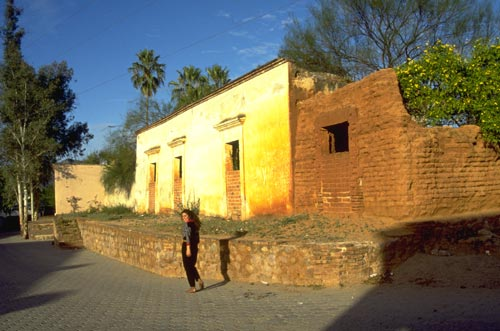 Galeana 41, Alamos, Sonora, Mexico.  Photo by Gary Ruble.