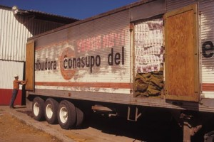 Conasupo truck, Alamos, Sonora, Mexico. Photo by Anders Tomlinson.