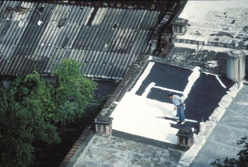 Worker painting roof in Alamos, Sonora, Mexico.  Photo by Anders Tomlinson.