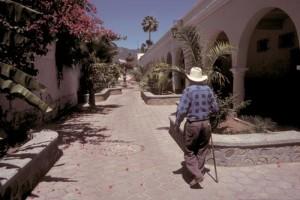 Histoty walk Escuela Paulito Verjan, Alamos, Sonora, mexico. Photo by Anders Tomlinson.