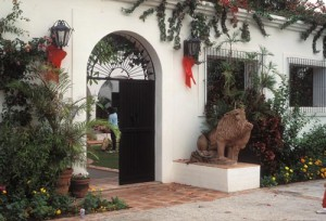 Stone lion guarding entrance, Alamos, Sonora, Mexico. Photo by Anders Tomlinson.