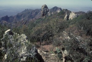 View from atop Mt. al;amos looking south west, Alamos, Sonora, Mexico. Photo by anders Tomlinson.