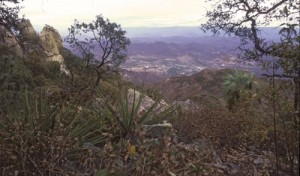 Atop Mt. Alamos looking north at Alamos, Sonora, Mexico. Photo by Anders Tomlinson.