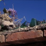 broken glass cemented on top of walls, Alamos, Sonora, Mexico. Photos by Anders Tomlinson.