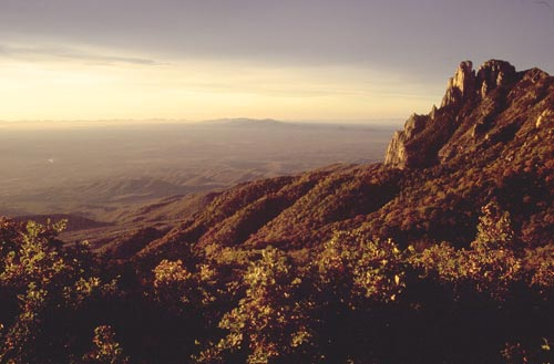 Atop Sierra de Alamos at sunrise, Alamos, Sonora, Mexico. Photo by Anders Tomlinson.