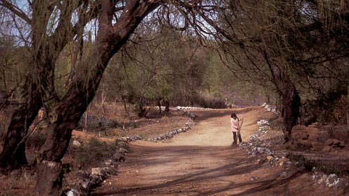 Woman sweeping dirt road, Alamos, Sonora, Mexico.  Photo by Anders Tomlinson.