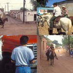 four horse scenes on the streets and roads of Alamos, Sonora, Mexico. Photos by Anders Tomlinson.