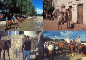 Four horse scenes in Alamos, Sonora, Mexico. Photos by Anders Tomlinson.