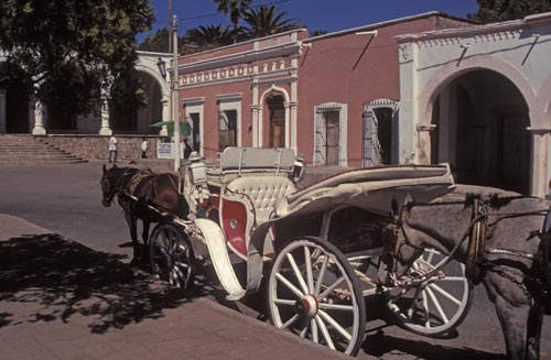 Horse drawn tours of Centro Alamos started in the Plaza, Alamos, Sonora, Mexico.