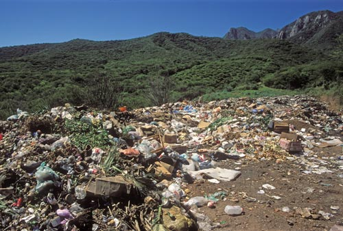 The municipal dump to the southeast of Alamos, Sonora, Mexico.  Photo by Anders Tomlinson.
