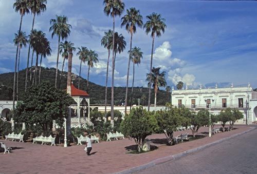 Indian woman walks acoss Plaza on a quiet summer day, Álamos, Sonora, Mexico.  Photo by Anders Tomlinson.