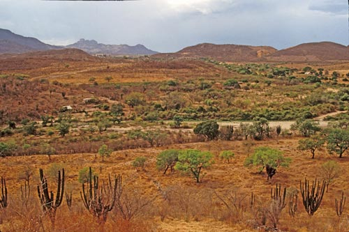 late spring in Alamos, Sonora, Mexico is a hot, dry, dusty season.  Photo By Anders Tomlinson.