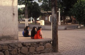 Late afternoon in the Alameda near the gas station, Alamos, Sonora, Mexico. Photo by Anders Tomlinson.
