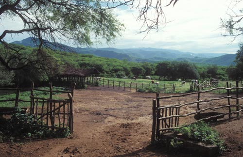 Looking east from the main house at Estancia Crysalis, Alamos, Sonora, Mexico.  Photo by Anders Tomlinson.