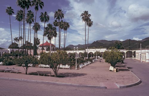 Looking north at the plaza from the church steps, Alamos, Sonora, Mexico.  Photo by Anders Tomlinson.