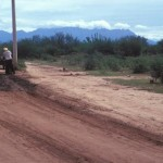 Working being done on a dirt road along with power poles in the campo, Alamos, Sonora, Mexico. Photo by Anders Tomlinson.