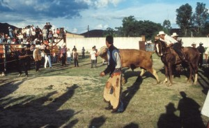 Summer rodeo at the ball park, Alamos, Sonora, Mexico. Photo by Anders Tomlinson.