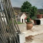 Nuzum roof top garden looking east at Mirador, Alamos, Sonora, Mexico. Photo by Anders Tomlinson.