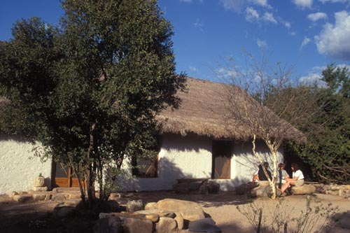 A small group gather outside the strawbale house built by Elizabeth Nuzum on El Pedregal, Alamos, Sonora, Mexico.  Photo by Anders Tomlinson.