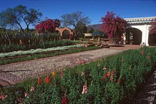 Jacoby gardens looking south west from the entrance, Alamos, Sonora, Mexico.  Photo by Anders Tomlinson.