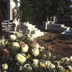 Flowers on a fresh grave, Alamos, Sonora, Mexico. Photo by Anders Tomlinson.