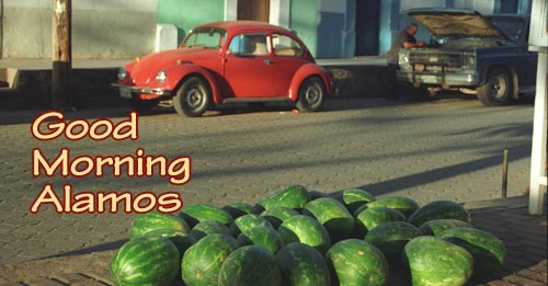 Watermelons and VW in the Alameda in the late afternoon, Alamos, Sonora, Mexico. Photo by Anders Tomlinson.