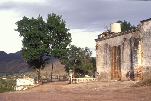 Jail entrance atop Guadaluope Hill, Alamos, Sonora, Mexico.  Photo by Anders Tomlinson.