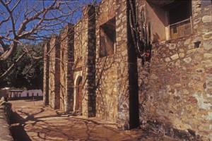 cactus in wall of la adauna church, sonora, mexico. photo by anders tomlinson.