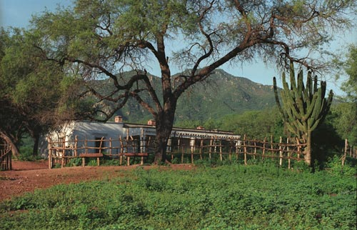main house at estancia crysalis, alamos, sonora, mexico.  photo by anders tomlinson.