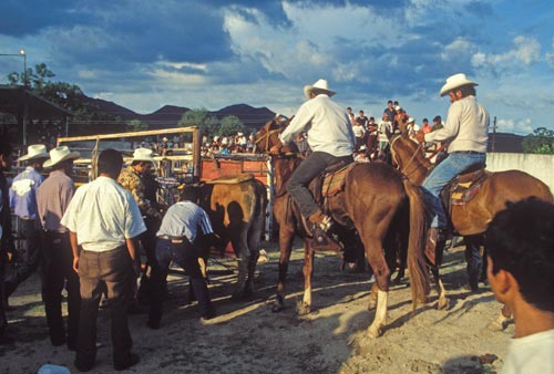 summer rodeo in álamos,sonora, mexico.  photo by anders tomlinson, 1996.