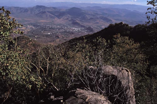 view of alamos, sonora, mexico from atop sireea de alamos in the spring. photo by anders tomlinson.