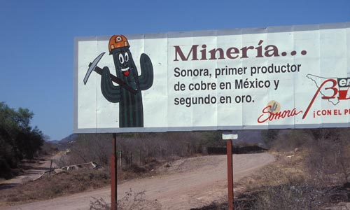Just southeast of Alamos, Sonora, Mexico on the road to El Fuerte.  Photo by Anders Tomlinson.