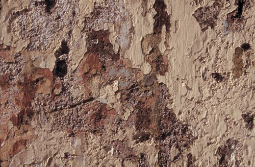 wall detail of peeling paint, alamos sonora mexico.