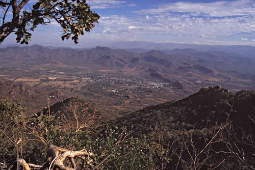 alamos, sonora, mexico seen from atop sierra de alamos.  spring 1996.  photo by anders tomlinson
